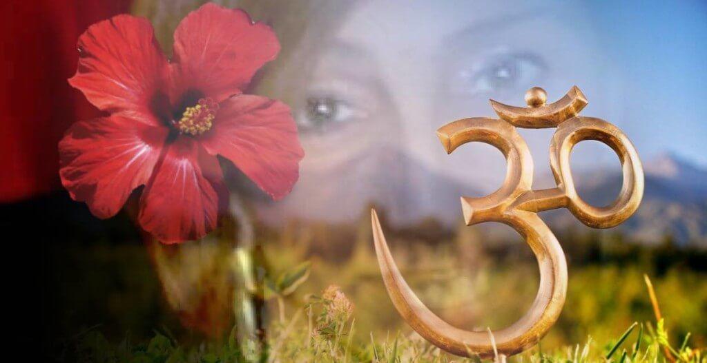 Fiore Rosso per sciogliere l'Invidia