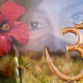 Come far emergere il Tuo Fiore Rosso per sciogliere l'Invidia