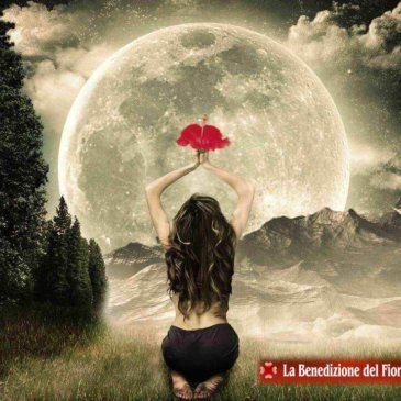 Il Concepimento del Fiore Rosso è nella Luna Piena