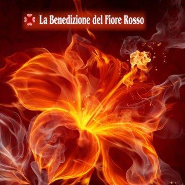 Il Dono del Fiore Rosso | Attivazioni Energetiche