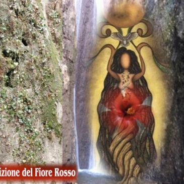 Il Radicamento del Fiore Rosso | Iniziazione con Carlita Moon Mother