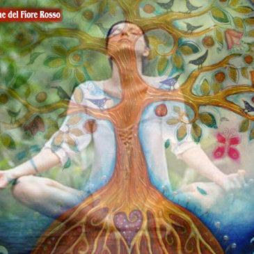 Il Talento dell'Energia Femminile: Il Fiore Rosso di prosperità